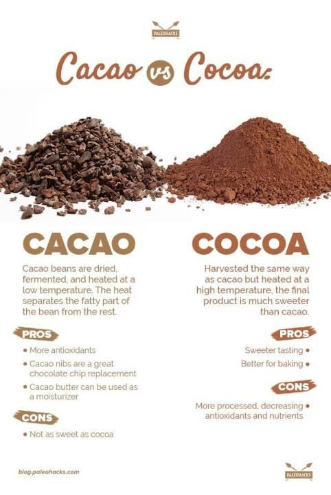 Cacao-vs-Cocoa